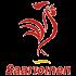 logo_saarioinen_02